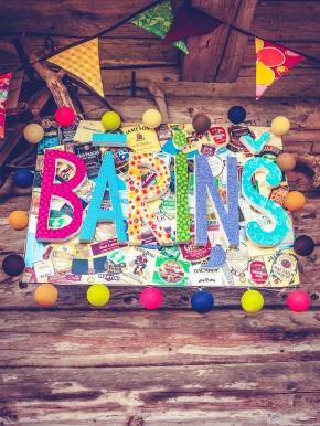 Barins1